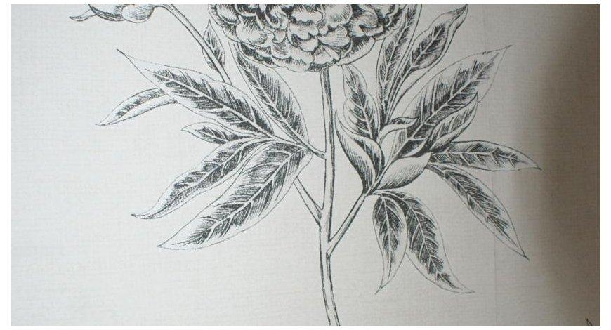 皇冠素描画步骤图