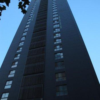 南京温馨满屋酒店公寓(木马店)图片5