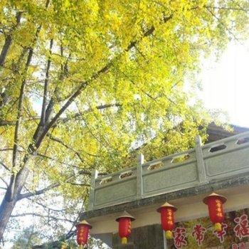 腾冲江东银杏村家常幸福农家乐图片0