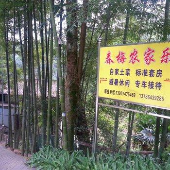 衡阳南岳春梅农家乐图片15