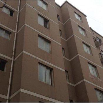 郑州菲特主题公寓图片10
