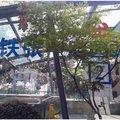 南京嘉年华公寓外观图