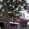 芒市丽红宾馆外观图