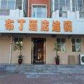 布丁酒店(天津西站南广场店)外观图