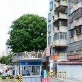 珠海花苑新村ファミリーアパートメント