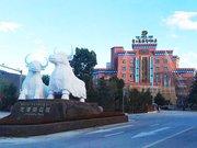香格里拉龙凤祥雅阁大酒店