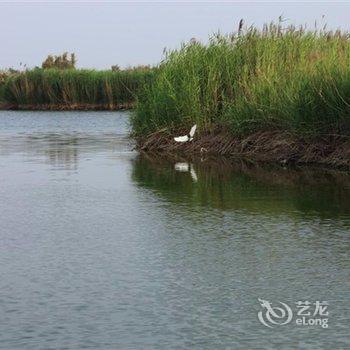 合阳黄河湾假日酒店酒店提供图片