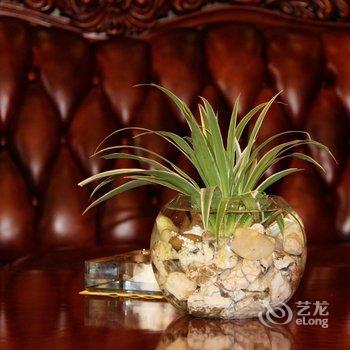 会东香江国际大酒店酒店提供图片