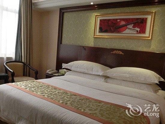 维也纳酒店(河源红星路店)