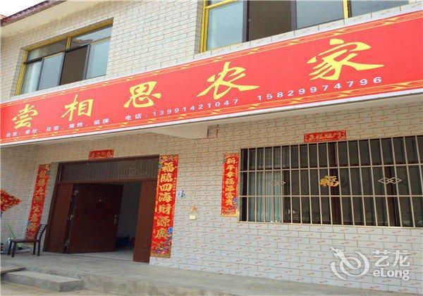 酒店 湛江市酒店  湛江硇洲岛海岛渔家乐     全部图片(29)