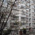 南京枇杷小屋
