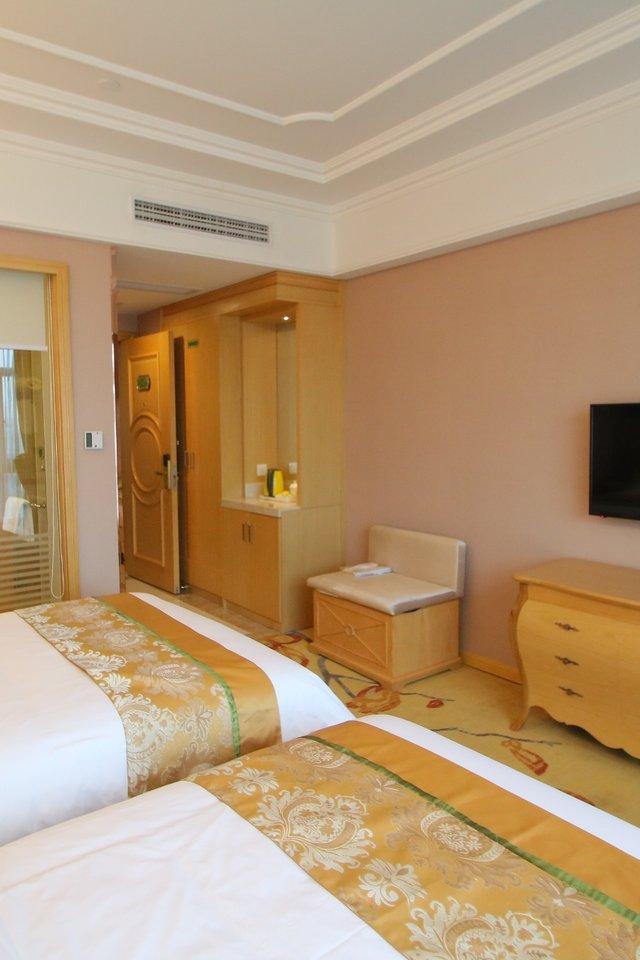 维也纳国际酒店(上海松江开发区店)豪华双人房
