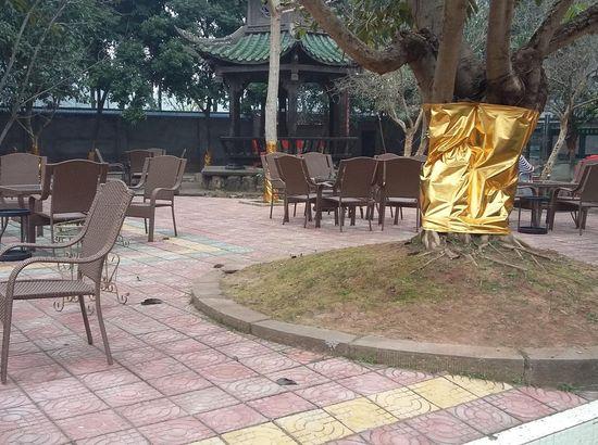 简阳龙泉湖出发龙马山庄南京开泰澳门香港自由行攻略图片