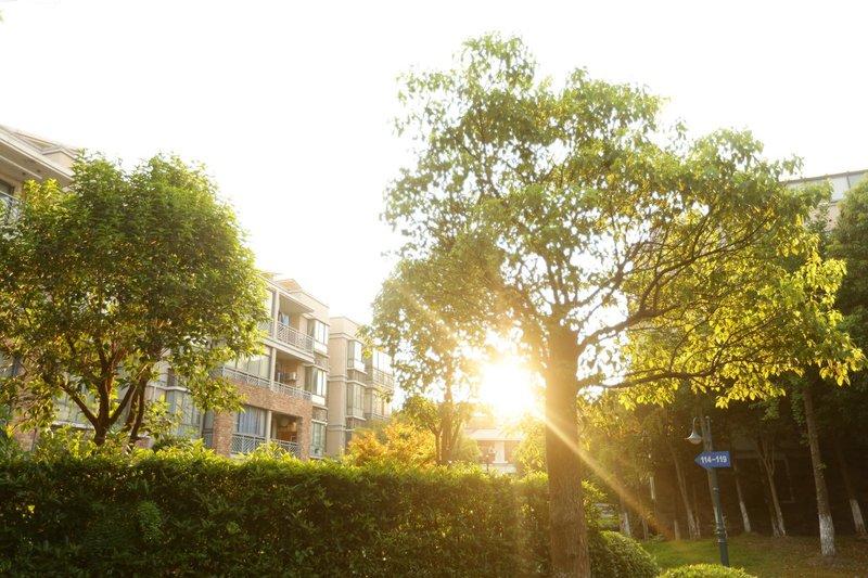 信江外滩别墅v别墅_上海外滩别墅地址、价格、上上海城融别墅图片