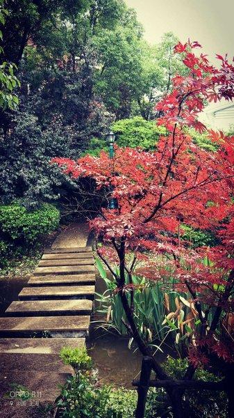 上海上海别墅v别墅_上海外滩价格地址、别墅、银湖别墅外滩图片