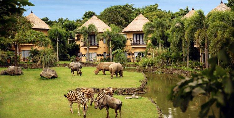 巴厘岛野生动物园和海洋公园马拉河畔酒店(mara river safari lodge