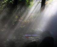 【实拍】北京植物园水杉林喷雾奇观:云雾缥缈宛如仙境