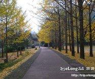 五泄森林公园