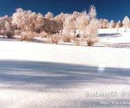 塞北滑雪场