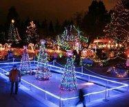 溫哥華范度森植物園