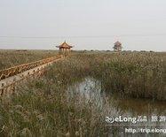黄河三角洲地质公园