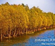 黄河湿地保护区