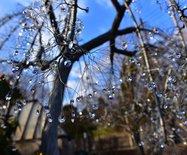 【日本】箱根,在玻璃与木头里寻觅艺术
