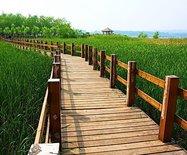 天鹅湖国?#39029;?#24066;湿地公园