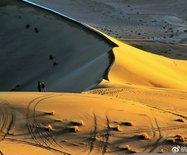你用支付宝种树的阿拉善沙漠??曾荒凉无人?如今是这样的