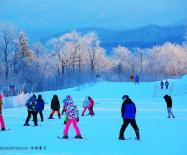阳春时节去滑雪,在美丽的亚布力共舞春雪