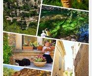 【法國】普羅旺斯特色小鎮一日游,原來普羅旺斯并不只有浪漫紫色!