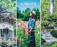 【日本?#30475;?#20989;馆到仙台,追寻日本夏日的绿野仙踪