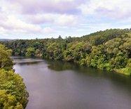 澳洲游记之十九---空中穿越热带雨林