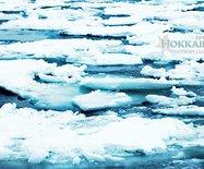 【北海道·网走】?#20998;?#38663;撼的鄂霍次克海流冰