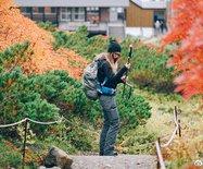 北海道:红叶美?#22478;?#23376;游,适合家庭出行的最佳目的地