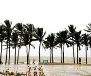 走海南:夸下???台风下的海滨