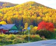 穿越貝加爾湖的金色秋天