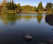 新西兰游之四----罗托鲁瓦地热温泉公园小憩