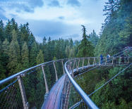 有人用六千元买了六千亩地用来伐木,却造就了世界最伟大的桥