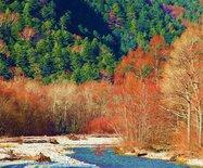 日本北陆,这个秋天许你一场多彩斑斓的世界