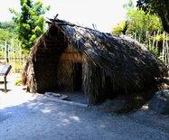 新西兰游记之二---毛利文化村参观记