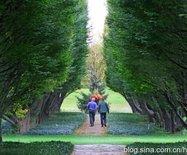 加拿大尼亚加拉植物园