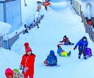 感受雪乡:努力做到让游?#22836;?#24515;、贴心、舒心