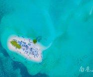 珊瑚礁还会生长燕窝,高空俯瞰像打翻了调色板