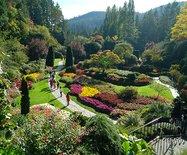 感知如画的风景--加拿大布查花园
