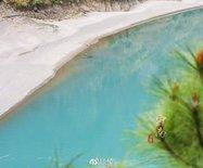 在青藏高原与印度洋之间,有一条翠绿的玉带,能填满七八百个滇池
