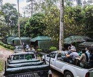 野性沙巴——踏缤野生动物保护区