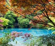 杭州有个江南小九寨,阳春三月竟如深秋般绚烂