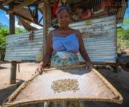 菲律宾老人用传承千年的工艺制作咖啡,成为抢手货