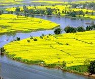 透过西部菜都的乡村新貌,感受重庆农民的悠闲生活